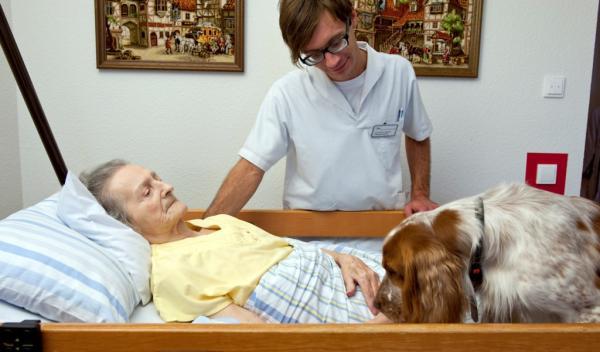 Helmut-Turck-Zentrum - Therapiehund auch im Bett